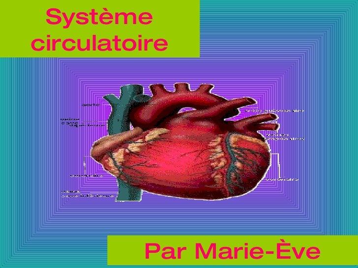 Système circulatoire Par Marie-Ève