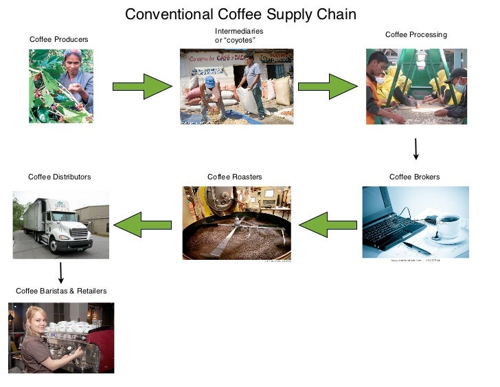 coffee supply chain Supply chain links for coffee costa coffee supply chain management gets a buzz not only due to the provision of coffee but also due to the substantial flow of data in among the various.