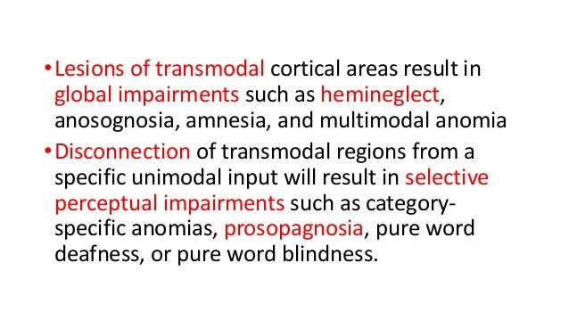 Cortical Visual Impairment