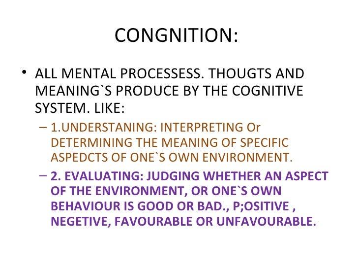Cognition consumer behaviour