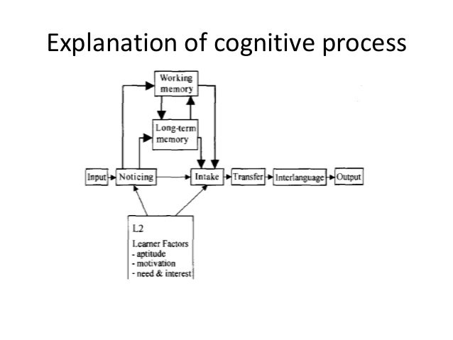 Explanation of cognitive process