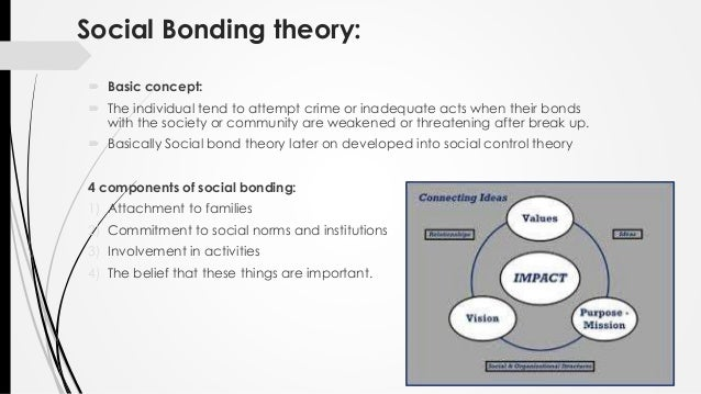 social bond theory