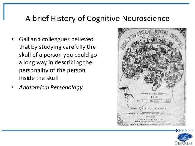 cognitive neuroscience Leading to a doctoral degree in psychological and brain science or cognitive   systems and behavioral neuroscience, cognitive and computational  ranked  2nd in the country in placing students in academic programs.