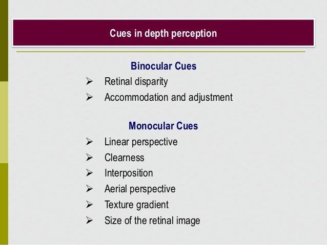 Cues in depth perception Binocular Cues  Retinal disparity  Accommodation and adjustment Monocular Cues  Linear perspec...
