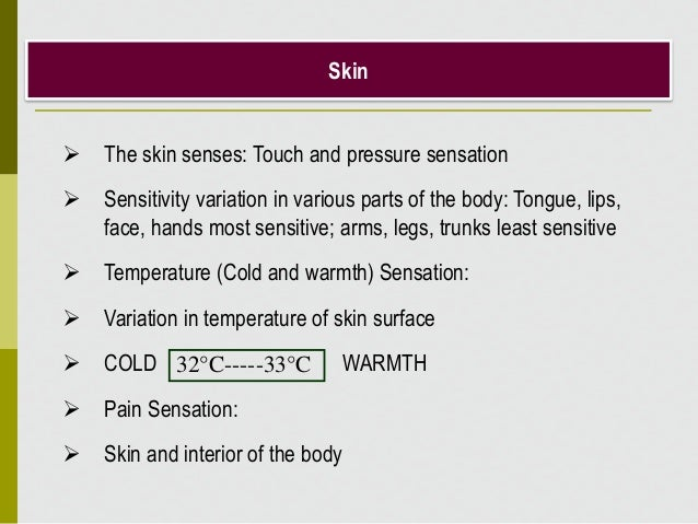 Skin  The skin senses: Touch and pressure sensation  Sensitivity variation in various parts of the body: Tongue, lips, f...