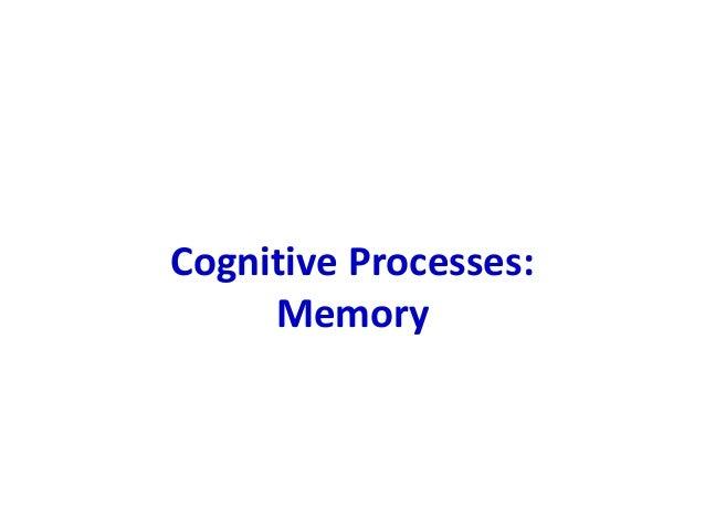 Cognitive Processes: Memory