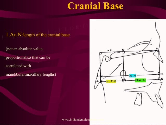 Cranial Base 1.Ar-N:length of the cranial base (not an absolute value, proportional,so that can be correlated with mandibu...