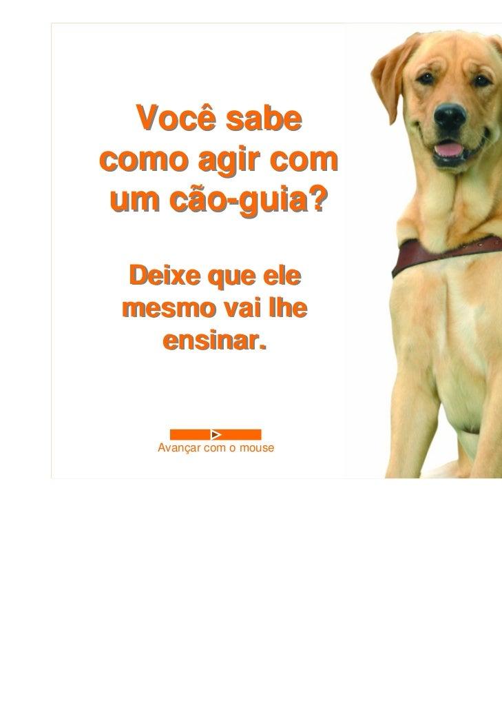 Você sabecomo agir com um cão-guia? Deixe que ele mesmo vai lhe   ensinar.   Avançar com o mouse