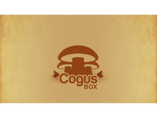 CogusBox Teaser