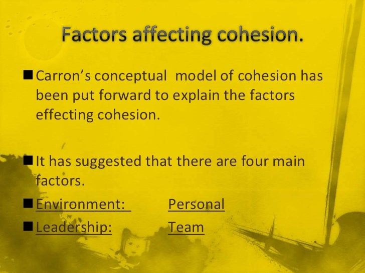 Carron's conceptual model of cohesion has been put forward to explain the factors effecting cohesion.It has suggested th...