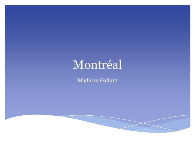 Montréal Madison Gallant