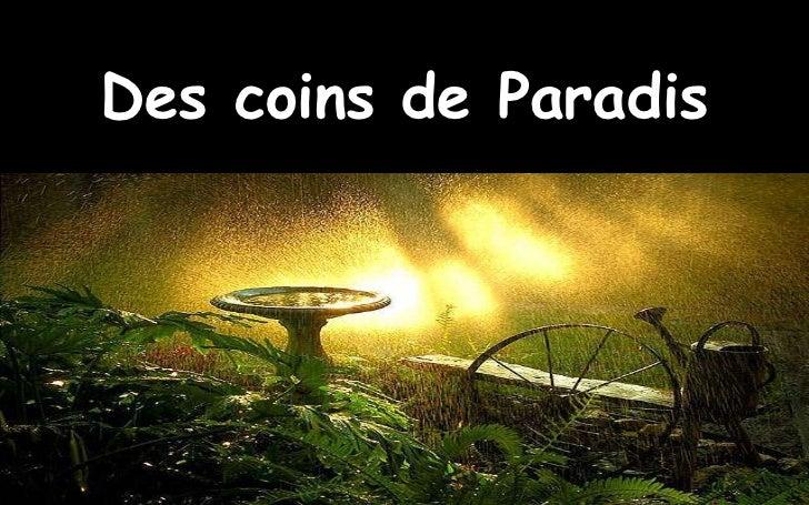 Des coins de Paradis
