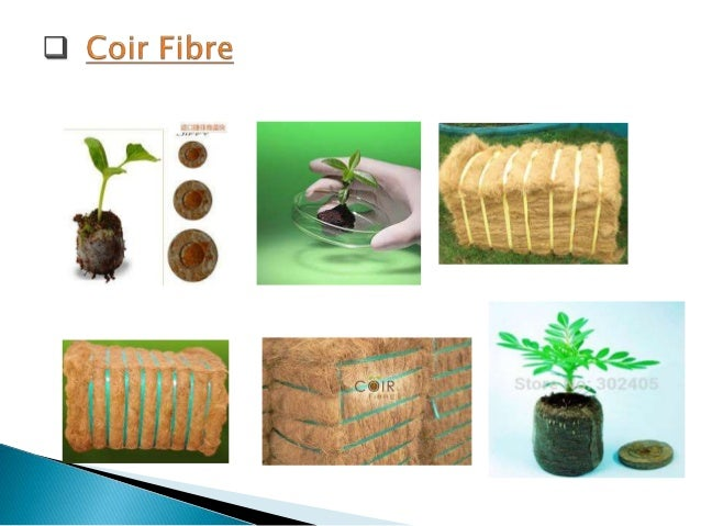 (Properties & Uses of Coir Fiber With Types & Manufacturing Process)