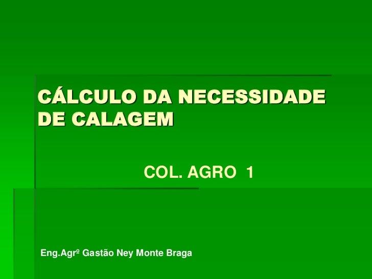 CÁLCULO DA NECESSIDADE     DE CALAGEM<br />COL. AGRO  1<br />Eng.Agrº Gastão Ney Monte Braga<br />