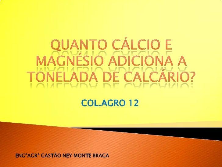Quanto Cálcio e magnésio ADICIONA A TONELADA DE CALCÁRIO?<br />COL.AGRO 12<br />ENGºAGRº GASTÃO NEY MONTE BRAGA<br />