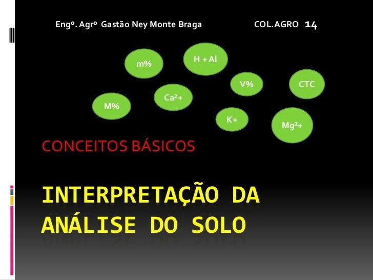 INTERPRETAÇÃO DA ANÁLISE DO SOLO<br />CONCEITOS BÁSICOS<br />Engº. Agrº  Gastão Ney Monte Braga                           ...