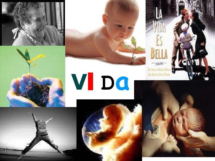 V i  D a