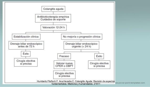 Humberto Flisfisch F. Ana Heredia C. Colangitis Aguda: Revisión de aspectos fundamentales. Medicina y humanidades. 21011