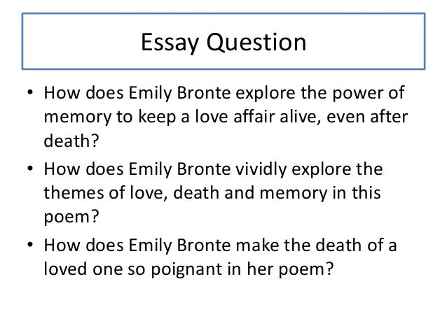emily brontes wuthering heights essay - the characters of catherine and heathcliff in wuthering heights emily bronte's wuthering heights can be considered a gothic romance or an essay on the human relationship the reader may regard the novel as a serious study of human problems such as love and hate, or revenge and jealousy.