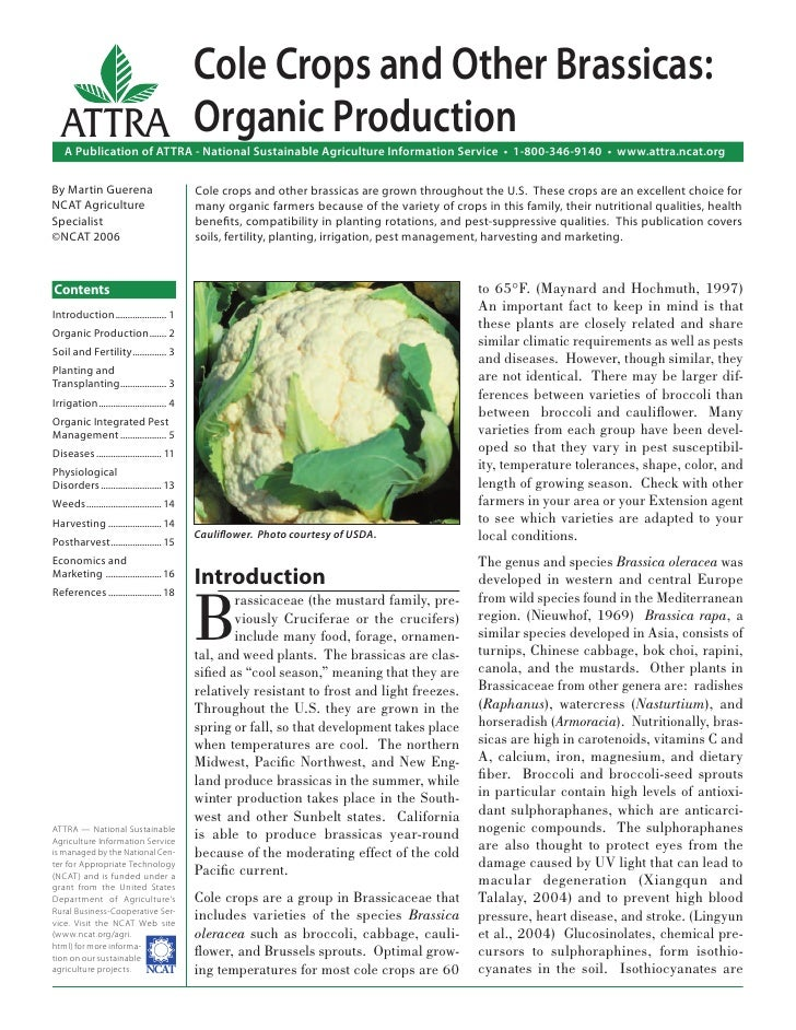 Cole Crops and Other Brassicas:  ATTRA Organic Production    A Publication of ATTRA - National Sustainable Agriculture Inf...