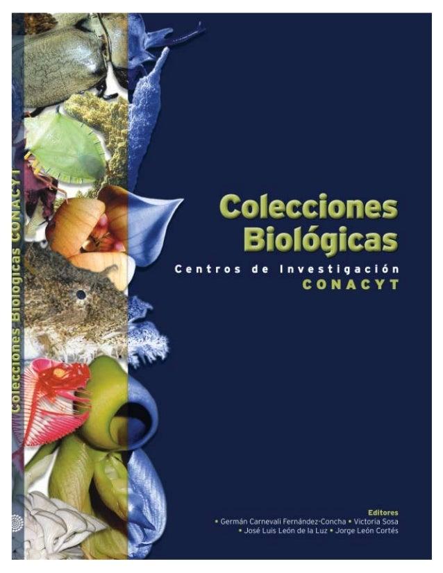 COLECCIONES BIOLÓGICAS DE LOS CENTROS DE INVESTIGACIÓN CONACYTNo está permitida la reproducción total o parcial de este ca...
