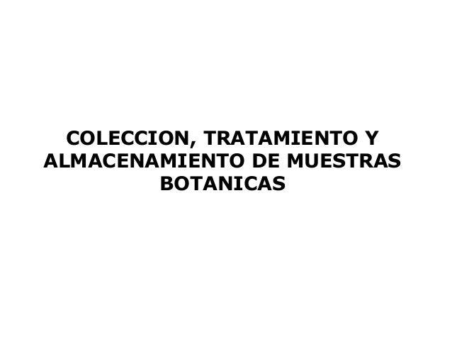 COLECCION, TRATAMIENTO YALMACENAMIENTO DE MUESTRAS         BOTANICAS