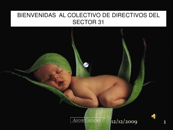 BIENVENIDAS  AL COLECTIVO DE DIRECTIVOS DEL SECTOR 31<br />08/11/2009<br />1<br />