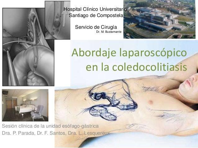 Sesión clínica de la unidad esófago-gástrica Dra. P. Parada, Dr. F. Santos, Dra. L. Lesquereux Abordaje laparoscópico en l...