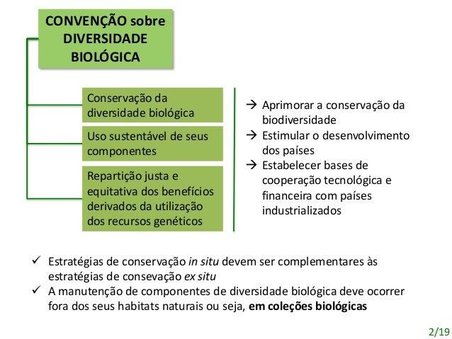 CONVENÇÃO sobre DIVERSIDADE BIOLÓGICA Conservação da diversidade biológica Uso sustentável de seus componentes Repartição ...