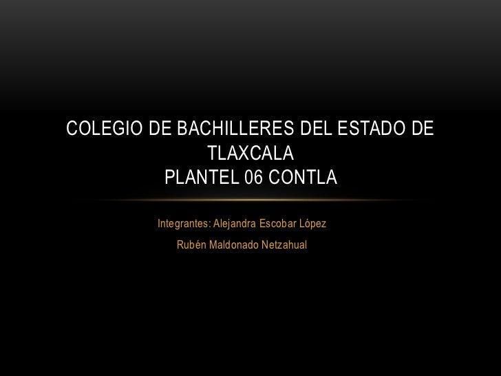 COLEGIO DE BACHILLERES DEL ESTADO DE              TLAXCALA         PLANTEL 06 CONTLA        Integrantes: Alejandra Escobar...