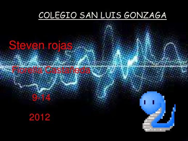 COLEGIO SAN LUIS GONZAGASteven rojasFiorella Castañeda    9-14    2012