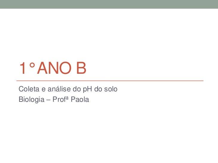 1° ANO BColeta e análise do pH do soloBiologia – Profª Paola
