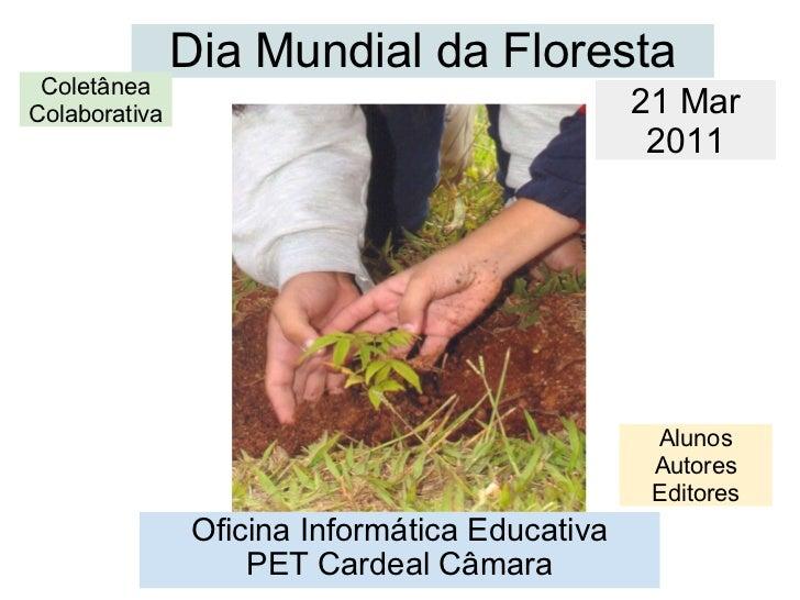 Dia Mundial da Floresta Oficina Informática Educativa PET Cardeal Câmara 21 Mar 2011 Coletânea Colaborativa Alunos Autores...
