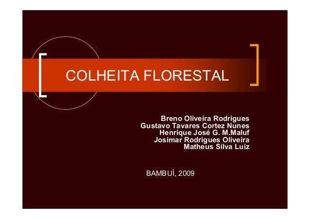 COLHEITA FLORESTALBreno Oliveira RodriguesGustavo Tavares Cortez NunesHenrique José G. M.MalufJosimar Rodrigues OliveiraMa...
