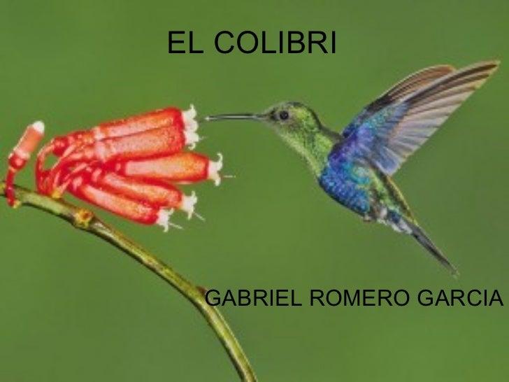 EL COLIBRI GABRIEL   ROMERO   GARCIA