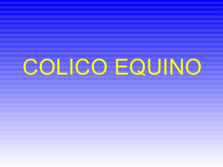 COLICO EQUINO