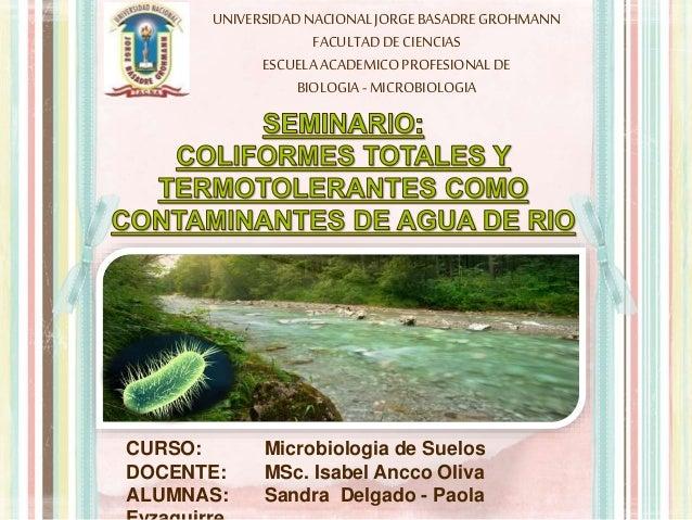 UNIVERSIDADNACIONALJORGEBASADREGROHMANN FACULTADDECIENCIAS ESCUELAACADEMICOPROFESIONALDE BIOLOGIA -MICROBIOLOGIA CURSO: Mi...