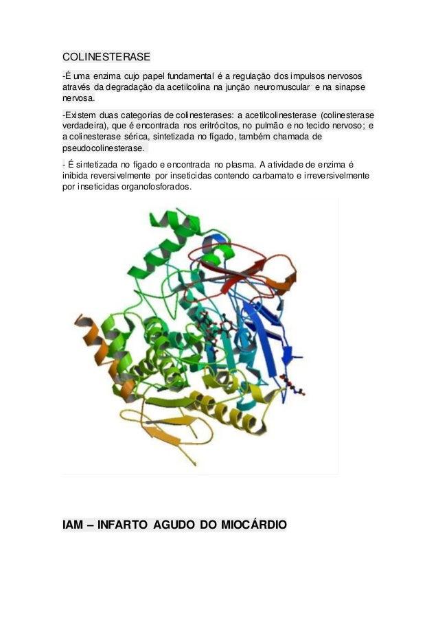 COLINESTERASE -É uma enzima cujo papel fundamental é a regulação dos impulsos nervosos através da degradação da acetilcoli...