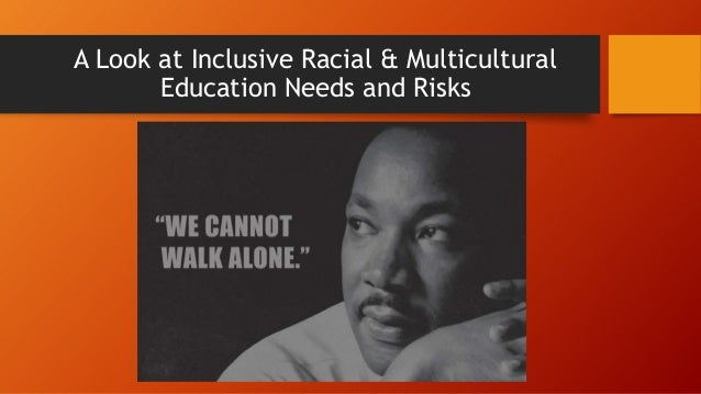 A Look at Inclusive Racial & Multicultural Education Needs and Risks