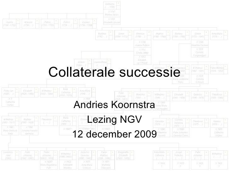Collaterale successie Andries Koornstra Lezing NGV 12 december 2009
