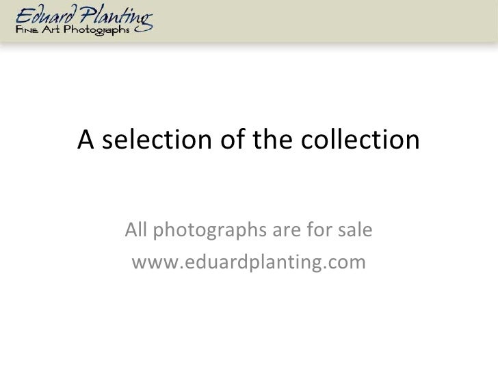 A selection of the collection All photographs are for sale www.eduardplanting.com