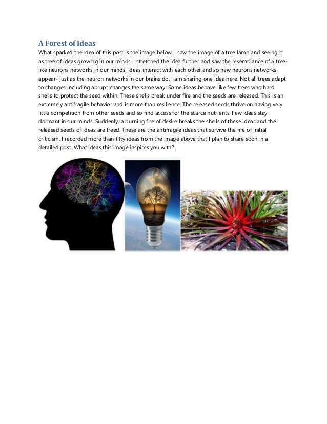 A Forest of Ideas What sparked the idea of this post is the image below. I saw the image of a tree lamp and seeing it as t...