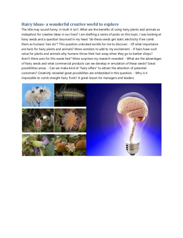 Hairy Ideas- a wonderful creative world to explore The title may sound funny; in truth it isn't. What are the benefits of ...