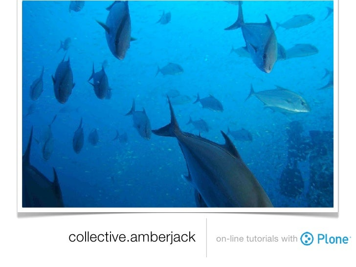collective.amberjack   on-line tutorials with
