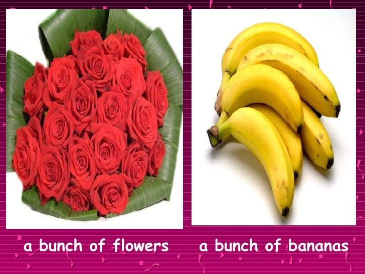 <ul><li>a bunch of flowers   a bunch of bananas </li></ul>