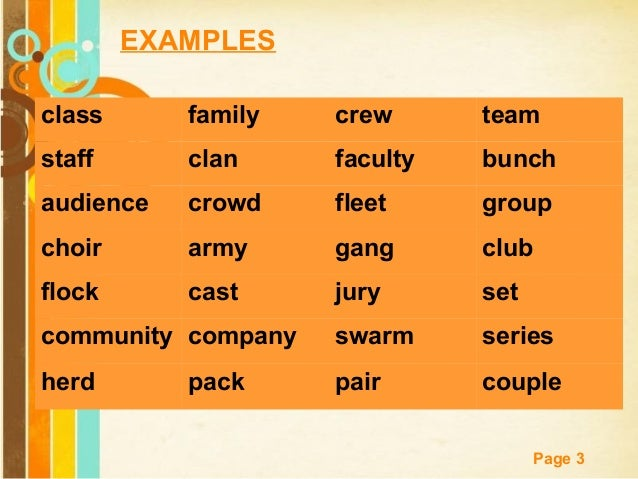 EXAMPLES class  family  crew  team  staff  clan  faculty  bunch  audience  crowd  fleet  group  choir  army  gang  club  f...