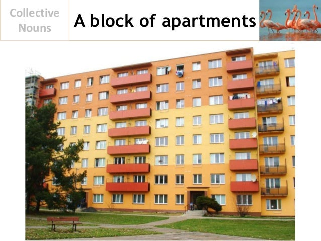 A block of apartments Collective Nouns
