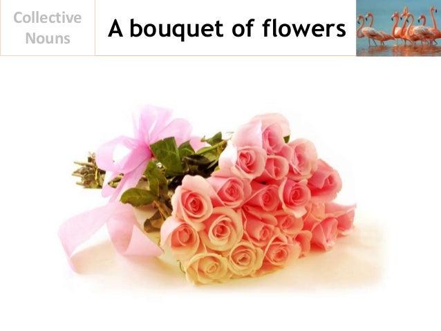 A bouquet of flowers Collective Nouns