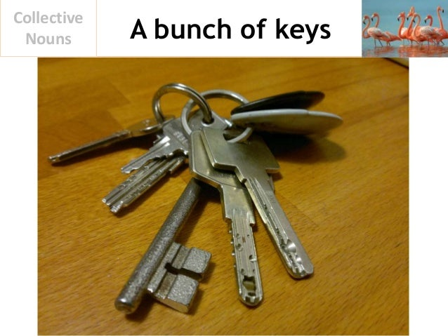 A bunch of keys Collective Nouns