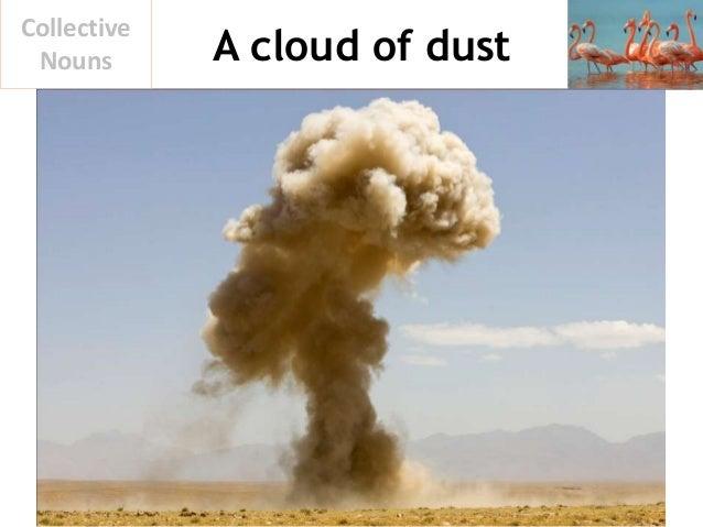 A cloud of dust Collective Nouns